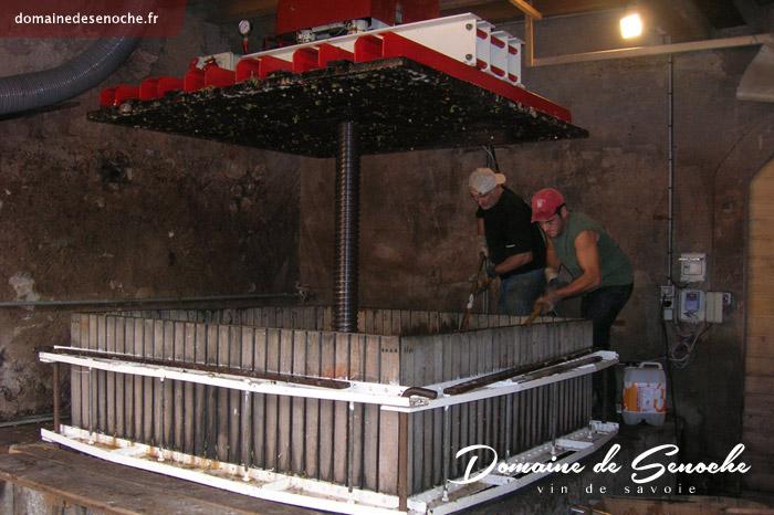 Les vendanges, qui ont lieu fin septembre début octobre, sont faites à la main. L'utilisation d'un ancien pressoir à vis verticale permet d'obtenir des mous de qualité.